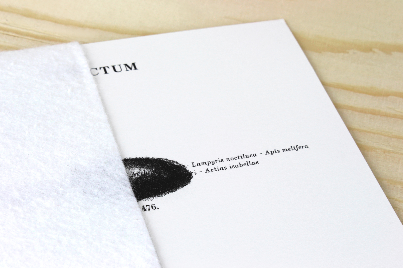 Insectum - packaging cd